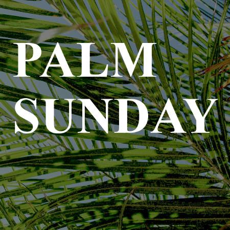 palm sunday at presbyterian church